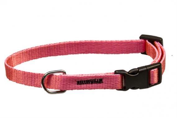 Obojek puppy nylon rozlišovací - růžový B&F 1,00 x 18-26 cm
