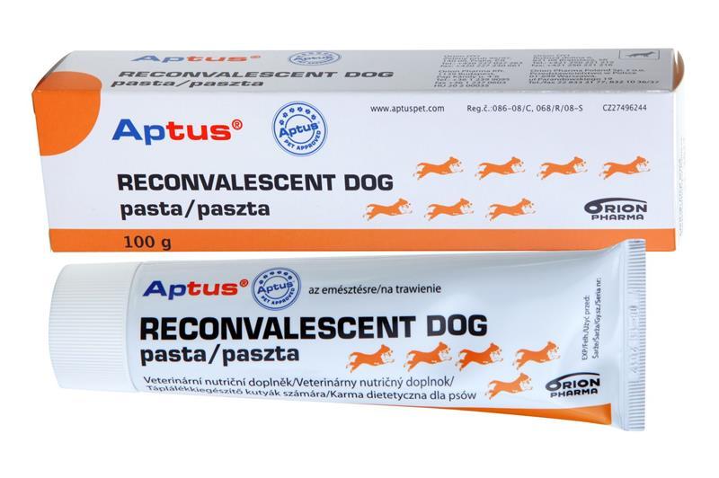 Aptus Reconvalescent DOG pst 100 g